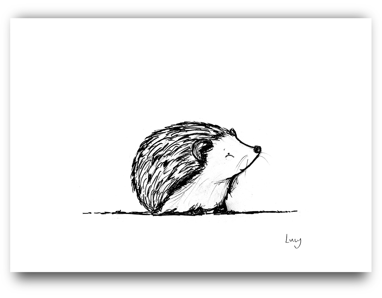 Cheeky Animals - Hedgehog